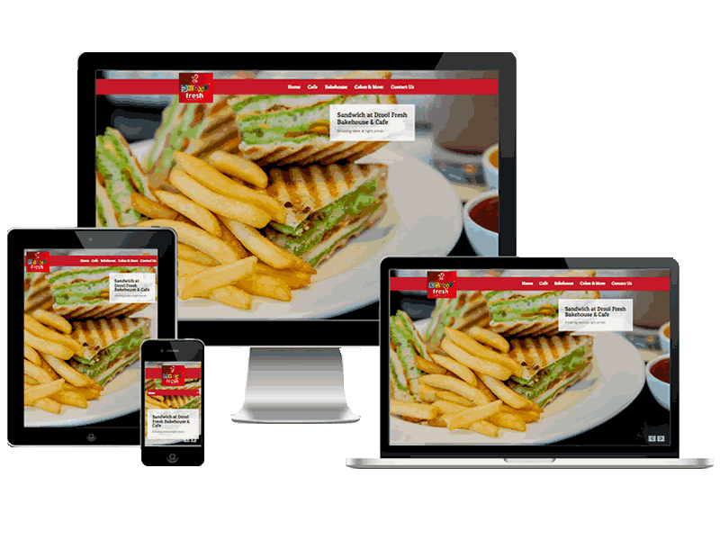 Drool Fresh Restaurant Dwarka Website Design
