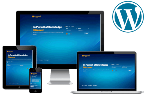 Agyani.com Start-up Website Design & Digital Strategy