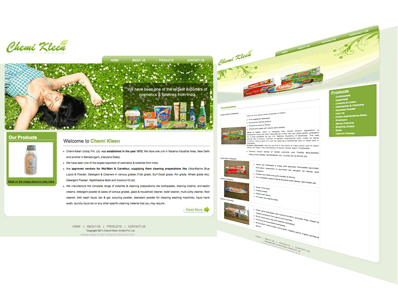 Chemi Kleen Delhi Website Design