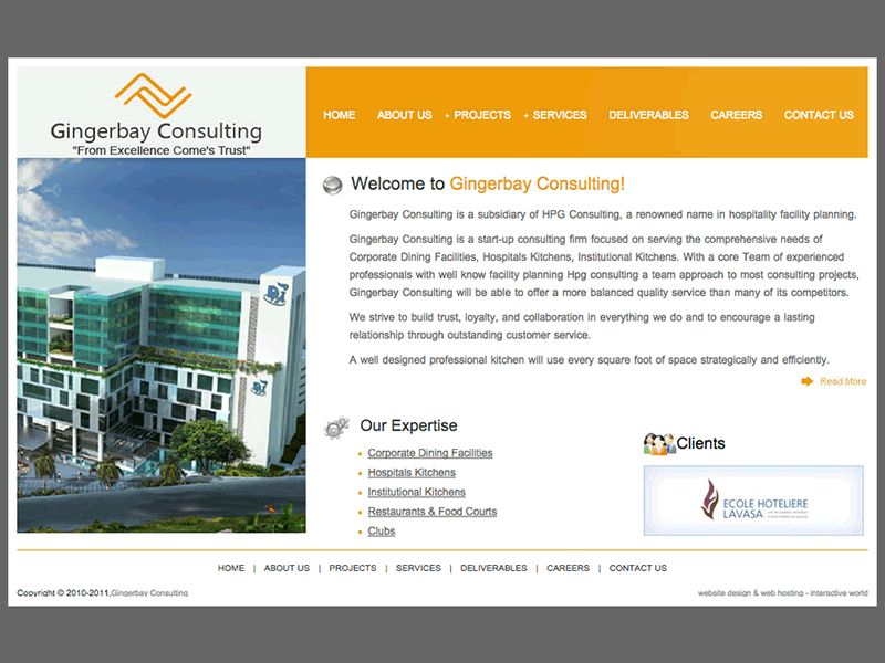 Gingerbay Consulting Company B2B Startup Website Design